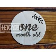 """Табличка для фотосессии """"Один месяц"""""""